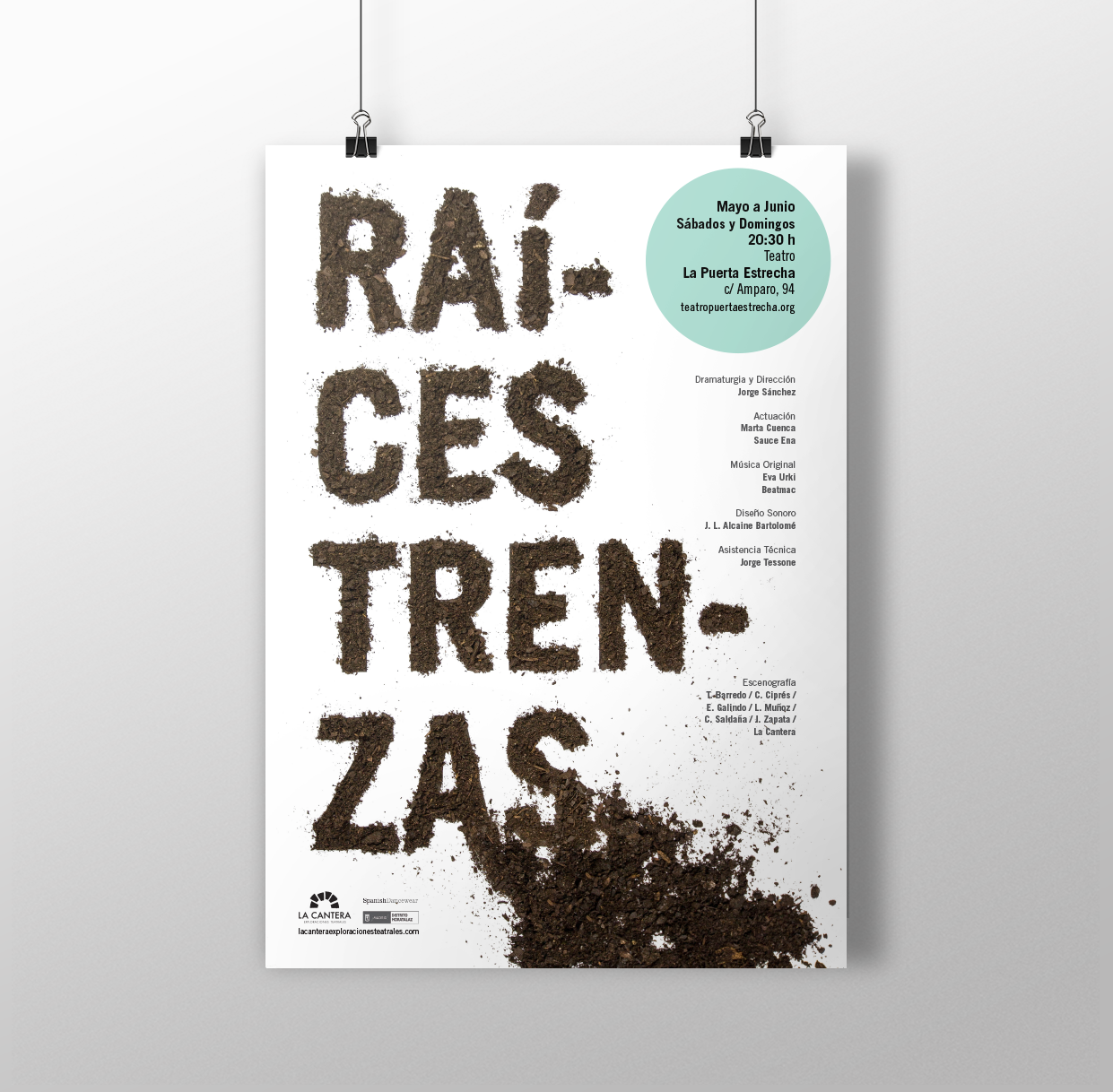02-RAICES-TRENZAS-CARTEL-B-MOCKUP.png