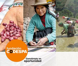 codespa_presentacion