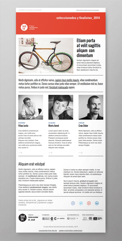 bid14_newsletter_comunicacion_01.jpg