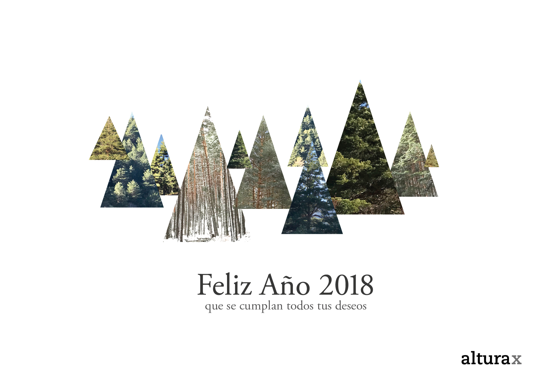 felicitacion-2018-03_Mesa-de-trabajo-1-copia-3.jpg
